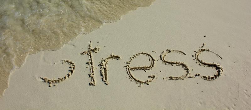 Hvordan får man stress ud af kroppen hurtigt?