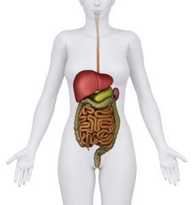 Detox din lever