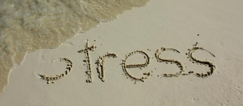 Hvordan får man stress ud af kroppen?