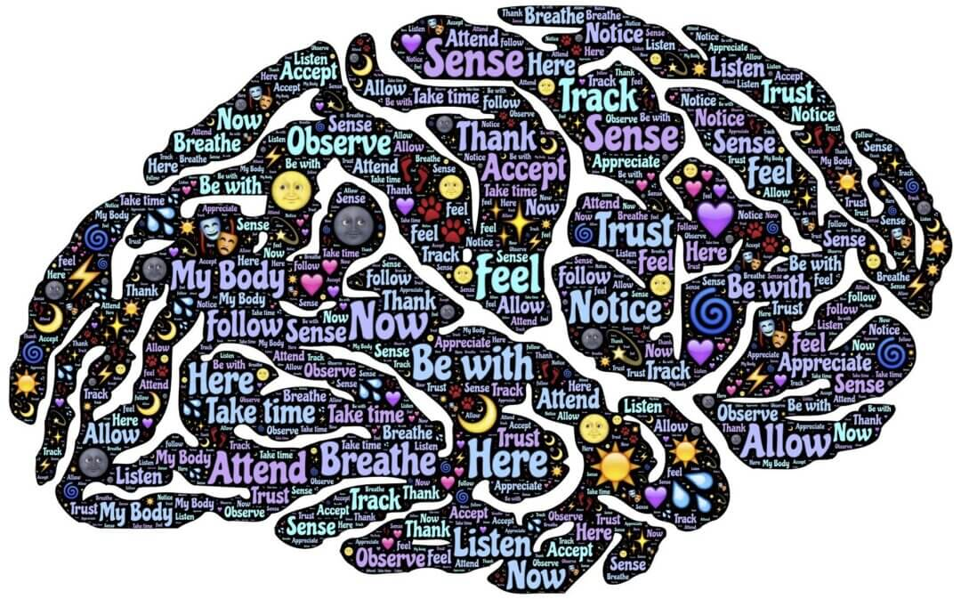 TBZ - FLOW er træning for hjerne, hjerte og bevidsthed